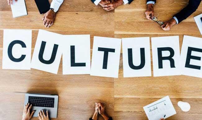 case-5-org-culture